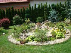 dārzu foto (5)