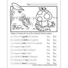 Fichier PDF téléchargeable En noir et blanc seulement Niveau 1re année 1 page  L'élève encercle si l'énoncé est vrai ou faux, 9 énoncés avec les concepts: gauche, droite, entre, devant, derrière, sous et sur. French Flashcards, French Worksheets, Comprehension Activities, Reading Comprehension, French Prepositions, Grade 1 Reading, French Education, Core French, French Grammar