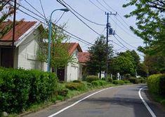 桜並木と阿佐ヶ谷住宅 | 石田ゆうすけのエッセイ蔵