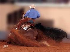 Great Picture of a working cow horse in action AWESOME  from the gotcowhorse.com webpage