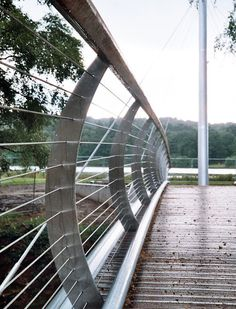 Trentham Gardens Footbridge Balustrade with Structural Support Cables Deck Railing Design, Deck Railings, Stair Railing, Outdoor Handrail, Stainless Steel Balustrade, Metal Deck, Easy Deck, Glass Stairs, Steel Fabrication