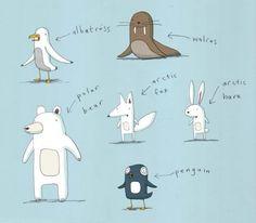 arctic and antarctic animals - alex latimer