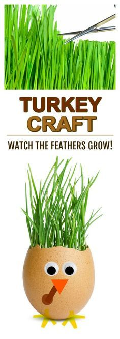 fun kid project grow your own turkey feathers and then cut style them