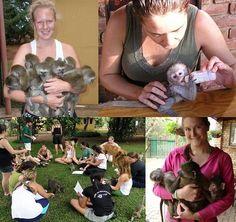 Volunteer in South Africa - Monkey & Wildlife Rehabilitation Center - GoEco