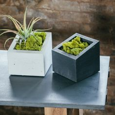 Handmade Sliced Open Concrete Planter in Black