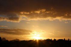 Sunrise over the allotments