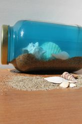 seashell wave bottles for under the sea party