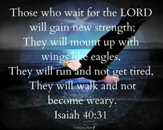 """Isaiah 40:31""""Those who wait for the LORD will gain new strength; They will mount up with wings like eagles, They will run and not get tired, They will walk and not become weary."""