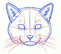 how to draw wild cats step 6 Cat Drawing Tutorial, Art Painting, Animal Art, Animal Drawings, Cool Art Drawings, Guided Drawing, Amazing Art Painting, Animal Paintings, Cat Face Drawing