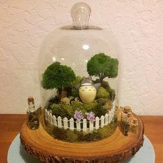 Totoro Terrarium