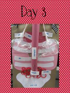 Marvelous Me! Paper Bag Human Body Project