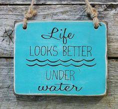 Life looks better under water. #scuba #diving