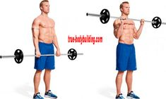 Gain Biceps And Triceps Mass With These 12 Exercises And Workout - Gym Guider Best Forearm Exercises, Best Lower Ab Exercises, Forearm Muscles, Belly Exercises, Gym Workout Chart, Workout Routine For Men, Gym Workout Tips, Lifting Workouts, Workout Men
