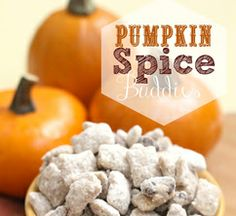 Pumpkin Spice Muddy Buddies Recipe using Cinnamon Chex Cereal, white chocolate chips, dried cranberries, pumpkin seeds, pumpkin pie spice, and powdered sugar