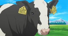 Silver Spoon Anime Image Gallery: A Cow in the Silver Spoon Anime