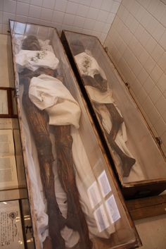 5) In 1888, a farmer named Graham Hamrick purchased two female corpses from the Trans-Allegheny Lunatic Asylum. This wanna-be scientist mummified the bodies with his patented embalming potion, trying to find out the secrets of the Pharoahs. Hamrick was successful and are in glass-topped wooden coffins in Philippi, WV.