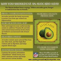 Why you should eat an avocado a day?    Algonquin Chiropractic Center  http://www.algchiro.com/  #chiropractor