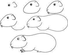 learn how to draw a hamster