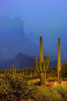 Superstition Mountains Phoenix, Arizona United States