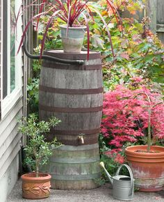 The New Sunset Western Garden Book, love this water recycle barrel!