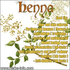 ❤ Learn All About Henna - Uses, Benefits & more ❤