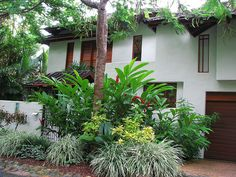 Landscape design on pinterest tropical gardens tropical for Garden design queensland