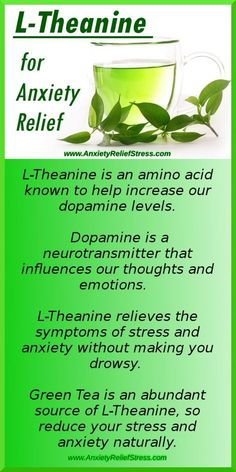 L-Theanine For Anxiety Relief - Find out how this amino acid in green tea relieves anxiety!