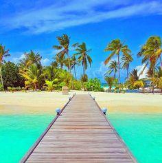 Safari Resort   Maldives
