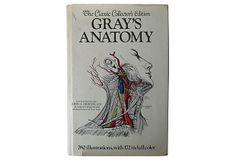 Gray's Anatomy on OneKingsLane.com