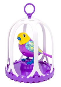 Digibird in cage Basically what these cute little birds can do is sing 20 different songs and the way you can get them to sing those songs is by whistling. However, you can also use the special ring whistle that comes in the pack, to command your bird.