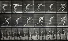 Eadweard Muybridge - Animal Locomotion Series, Plate 59, 1887 by The History of Photography Archive, via Flickr