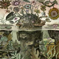 armando veve illustration - Búsqueda de Google Character Aesthetic, Illuminated Manuscript, My Images, Ladybug, Graffiti, Artsy, Creatures, World, Drawings