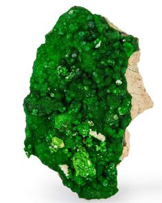 Conichalcite - Gold Hill, Gold Hill District (Clifton District), Deep Creek Mts., Tooele Co., Utah
