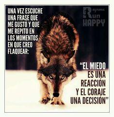 El miedo es una reacción y el coraje una decisión
