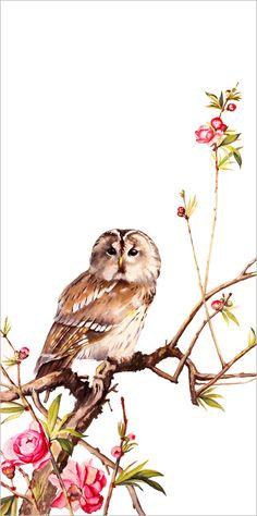 купить картину китайская живопись сова