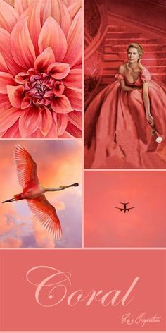 """An animating and life-affirming coral hue with a golden undertone that energizes and enlivens with a softer edge. Every December, the Pantone Colour Institute c Colour Schemes, Color Trends, Color Combos, Design Trends, Coral Pantone, Pantone Color, Coral Color, Coral Pink, Orange Pink"