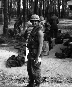 veitnam essay Essay: vietnam war before the us went to vietnam, twelve years before the war started, the french were there, it was their colony the french controlled the country.