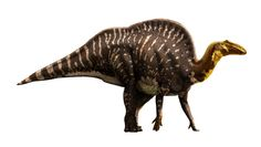 Ouranosaurus -Julius Csotonyi, Illustrator photo Ouranosaurus.jpg