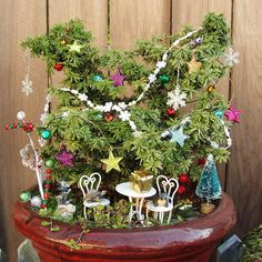 The Great Annual MiNiATuRe GaRDeN Contest CHRISTMAS