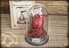 Miniature Anatomical Heart Diorama Rusty Vintage by damnfrenchdesserts - the perfect Valentine's Day gift.