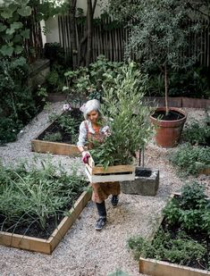Our gardener Dominique Cathelin at word, in Merci's little garden