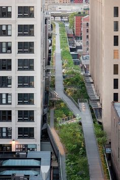 44 Best The High Line in New York City images