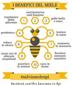 Italian Language, Bee Design, Fett, Animals And Pets, Medicine, Drinks, Health, Recipes, Benefit