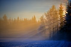 While I passed a deserted winter road, suddenly broke the light through the veil of fog and haze, and landed on the desolate and cold cornfield. We wish so definitely the sunlight welcome. Winter Road, Beautiful Sunrise, Sunlight, Nature Photography, Scenery, Mountains, Travel, Outdoor, Suddenly