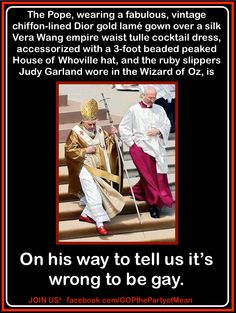 The Pope on homosexuality lol