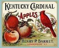 Fruit box label #cardinal #apple