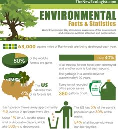 Environmental Statistics and the Consequences That Affect the Future of the Earth