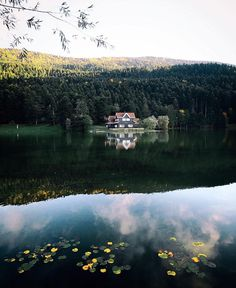 Abant gölü / Bolu Turkey Turkey Photos, 10 Picture, Turkey Travel, Holiday Pictures, World's Most Beautiful, Belleza Natural, Travel Photos, The Good Place, Around The Worlds