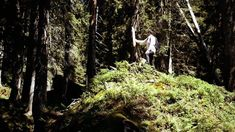 """Yves Suter x doodah """"Bödmeren"""" – Doodah: Doodah – Hidden in the back of the Muota Valley lies Bödmerenwald, a forest that has largely…"""