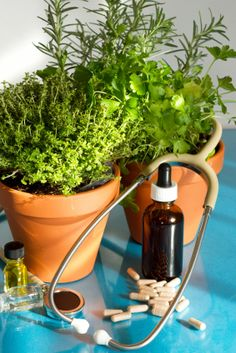 Natural Holistic Herbal Medicine